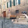 Сиена, фонтан у контрады пантеры, экскурсии по Флоренции и Тоскане с частным индивидуальным гидом на русском языке