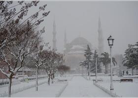 Утро 31-ого декабря. Выпал снег.