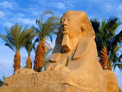 Неизвестные обстреляли туристов в Каире пиротехникой