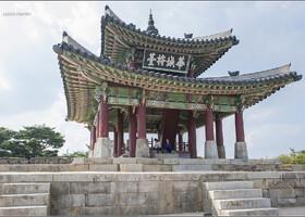 Любопытно, что все корейские города, как и американские столицы штатов, имеют свои символы. Символами Сувона является дерево - сосна,  цветок - азалия и насекомое - светлячок, который символизирует чистоту города.
