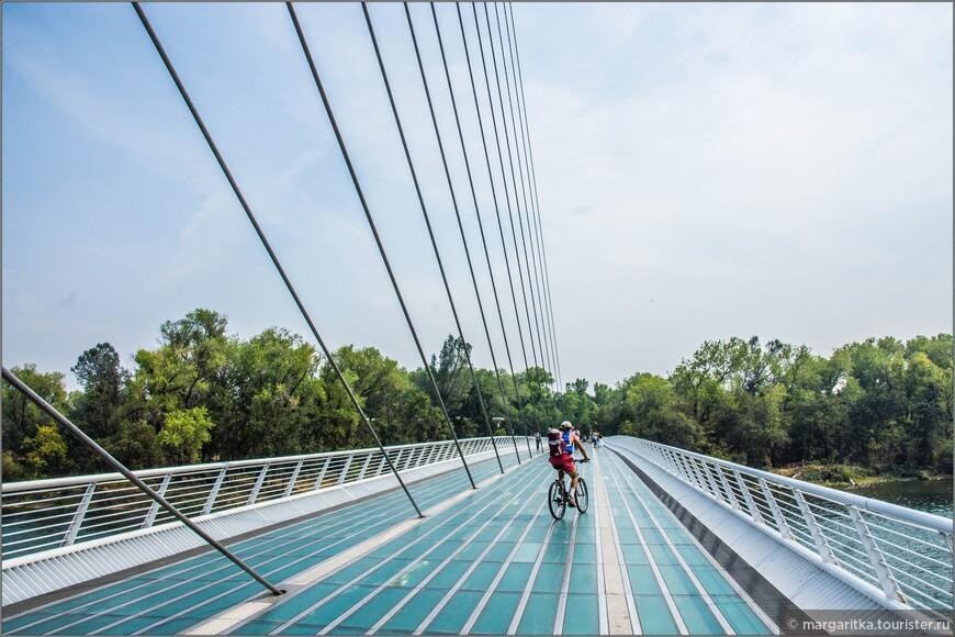 Под обратным наклоном в 42 градуса с помощью натянутых стальных тросов поддерживается почти 200-метровая стрела белоснежного моста.