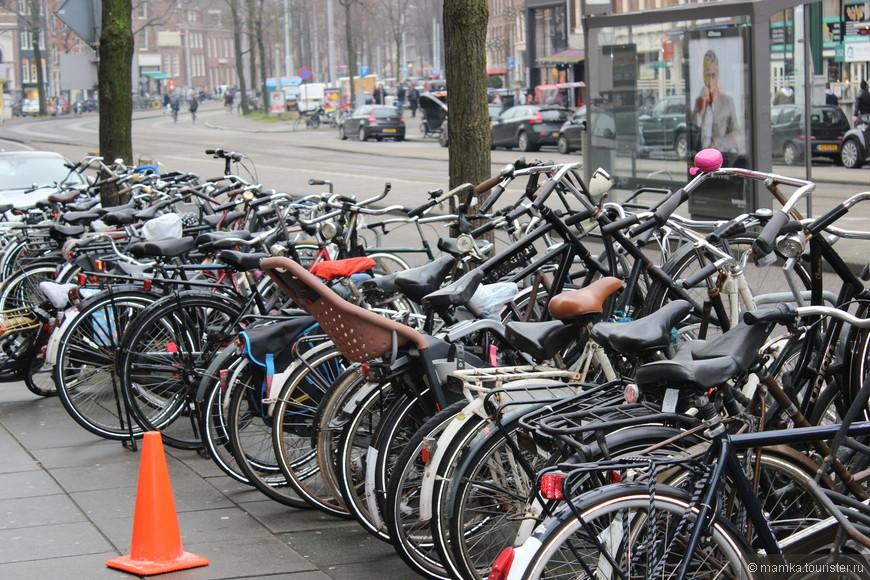 Не для кого не секрет, что Амстердам- это город велосипедов