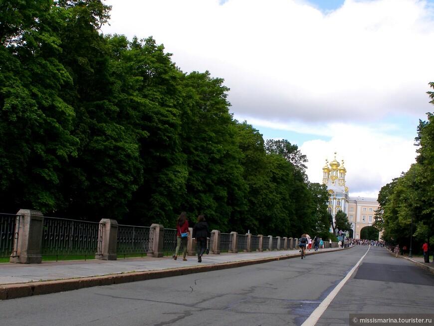 Садовая улица — одна из старейших улиц города Пушкина (Царского села). Улица начинается от арки Екатерининского дворца и заканчивается Парковой улицей и Софийским бульваром.