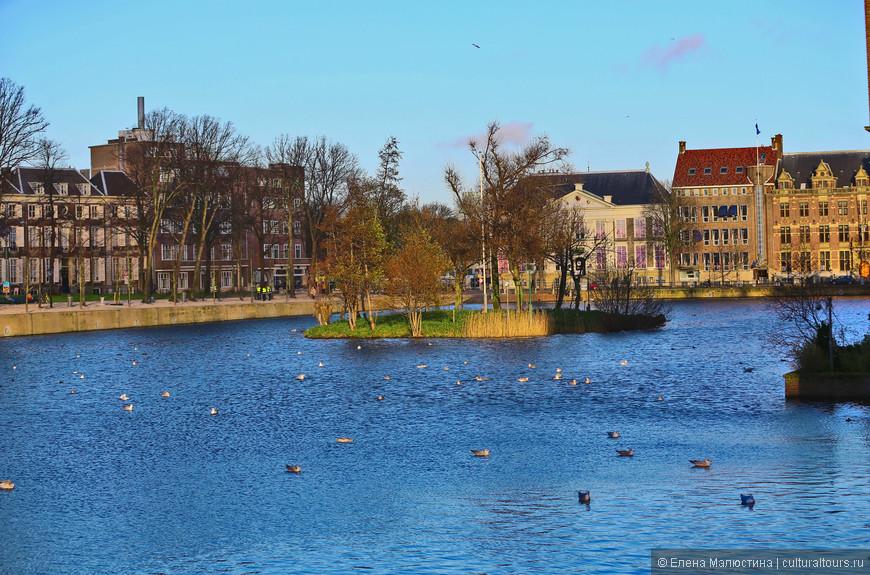 Бинненхоф в Гааге