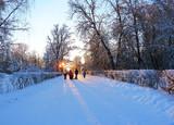 Pavlovsk Palace and Park. Охота на синичек!