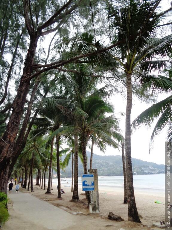 Пляж Камала является последней остановкой - до нее я и доехал, решив затем пройти на другие пляжи пешком