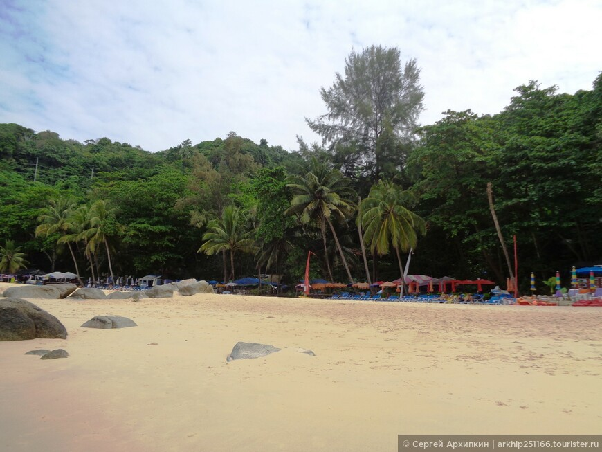 Возле самого пляжа тропическая зелень, в том числе и пальмы