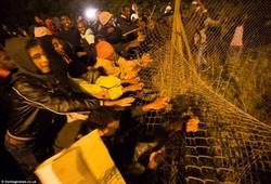 Порт в Кале прервал работу из-за вторжения мигрантов