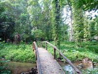 Национальный парк Бенча в Краби (ч.1)