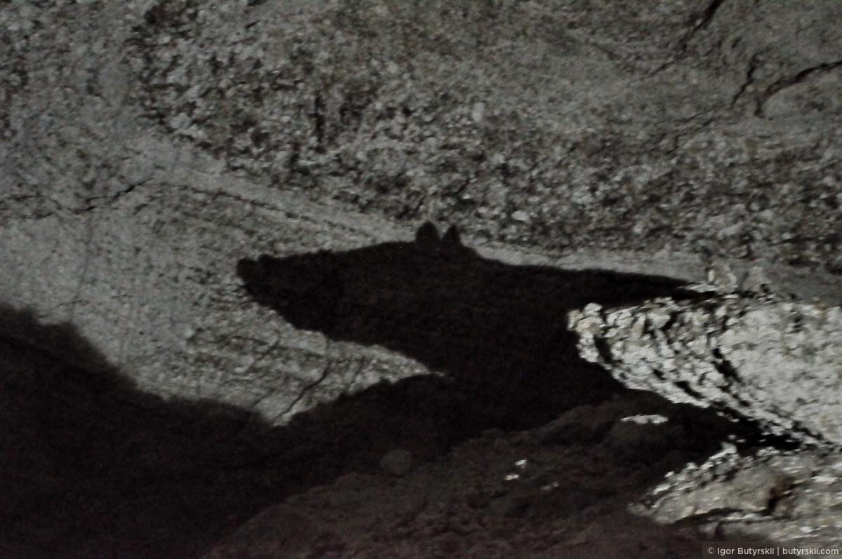 38. Огромная каменная мышь всегда следит за посетителями. Я, кстати, хочу признаться… Я прихватил с собой из пещеры камешек, небольшой, но настолько древний, что я не смог удержаться. Теперь у меня лежит частичка нашей планеты возрастом в 12000 лет., Кунгур — Ледяные пещеры