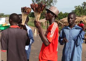 Уганда, Кения