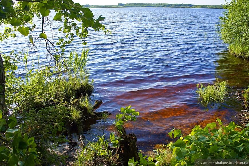 Озеро Богоявленское (его ещё называют Ламна) находится близ села Большая Ламна. Озеро слабопроточное. На берегу озера растёт очень красивая берёзовая роща. Это одно из красивейших мест района. Озеро Ламна – второе по величине в Ивановской области, озеро карстового происхождения. Глубина озера 4–5 м, в отдельных местах до 10 м. Берега озера возвышаются над горизонтом воды местами на 10–12 м. Озеро очень древнее, о чём свидельствует мощный слой озёрных отложений (сапропеля) (до 6 м) и большая площадь плавней.