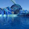 Дни Дельфинов (Dolphin Days) - потрясающее шоу c участием дельфинов на сценической площадке Dolphin Stadium