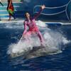 Шоу c участием дельфинов в Sea World