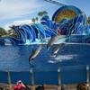 Дни Дельфинов (Dolphin Days) - потрясающее шоу c участием дельфинов